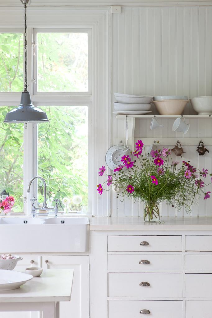 Odling-av-sommarblommor Rosenskära rosa vit vas kök odla blommor