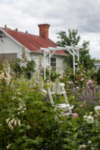 Cottage garden trädgård