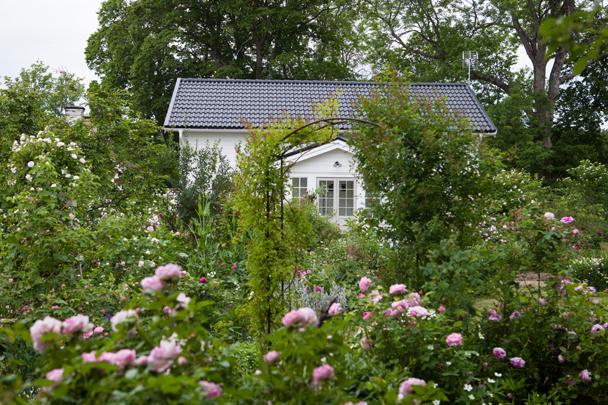 Rosenträdgård hus med portal.