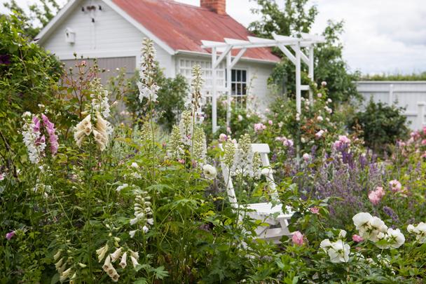 Kom på Trädgård och inredningsträff hos mig i Enköping. En cottage garden med massor av blommande perenner och  trädgårdssjul rosor perenner stol