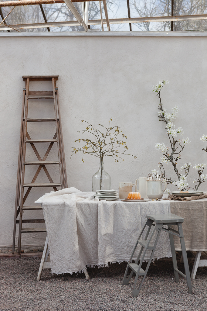 dukning växthus äppelgren stege