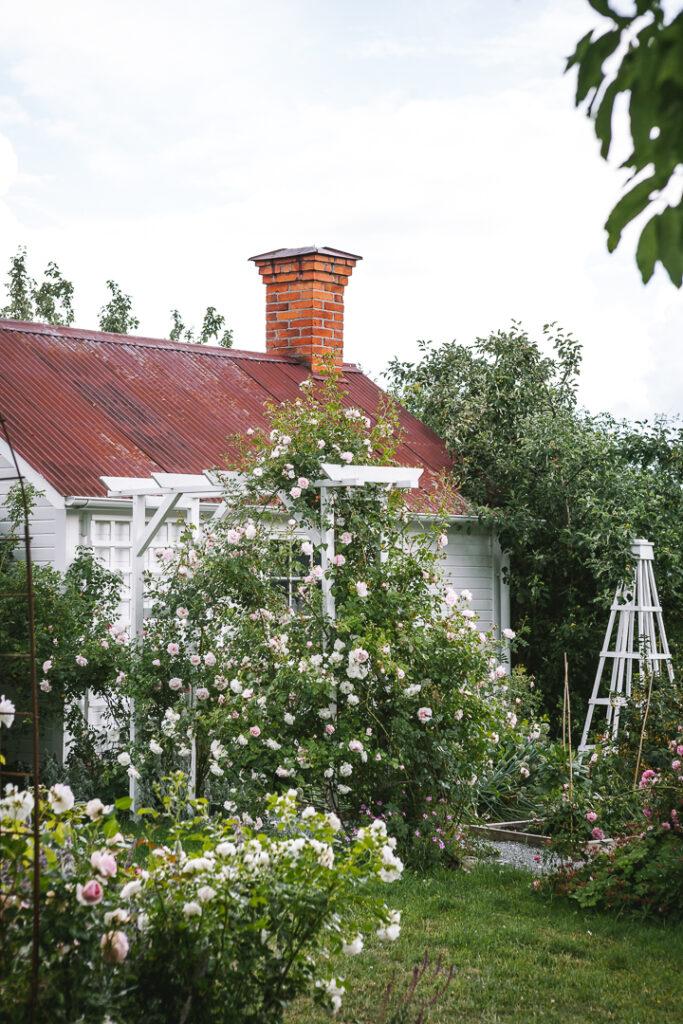 Öppen trädgård i Enköping